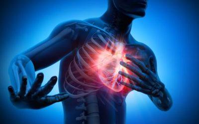 Heart Disease the Silent Kiwi Killer